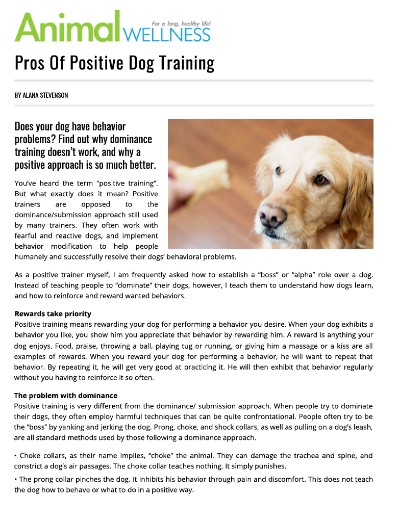 Pros of Positive Dog Training