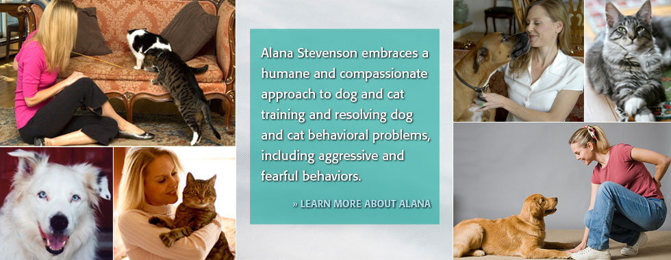 Alana Stevenson Animal Behaviorist & Trainer