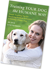 Training Your Dog the Humane Way