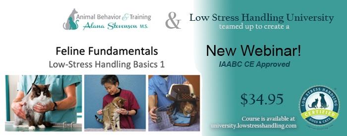 Feline Fundamentals Low-Stress Handling Basics 1