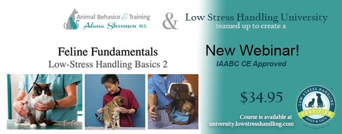 Feline Fundamentals Low-Stress Handling Basics 2