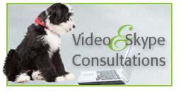 Alana Stevenson Video & Skype Consultation