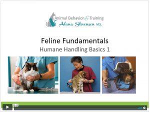 Feline Fundamentals Humane Handling 1